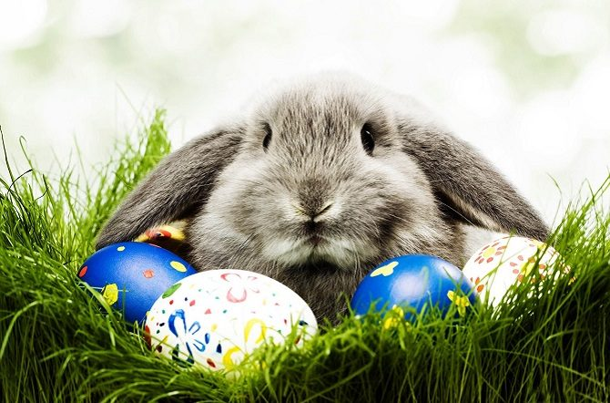 Easter Raffle Donations Please
