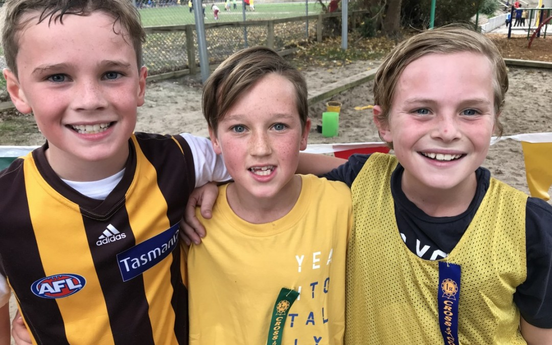 Yellow Wasps Triumph at the Cross Country