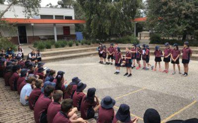 Grade 5/6 Sport